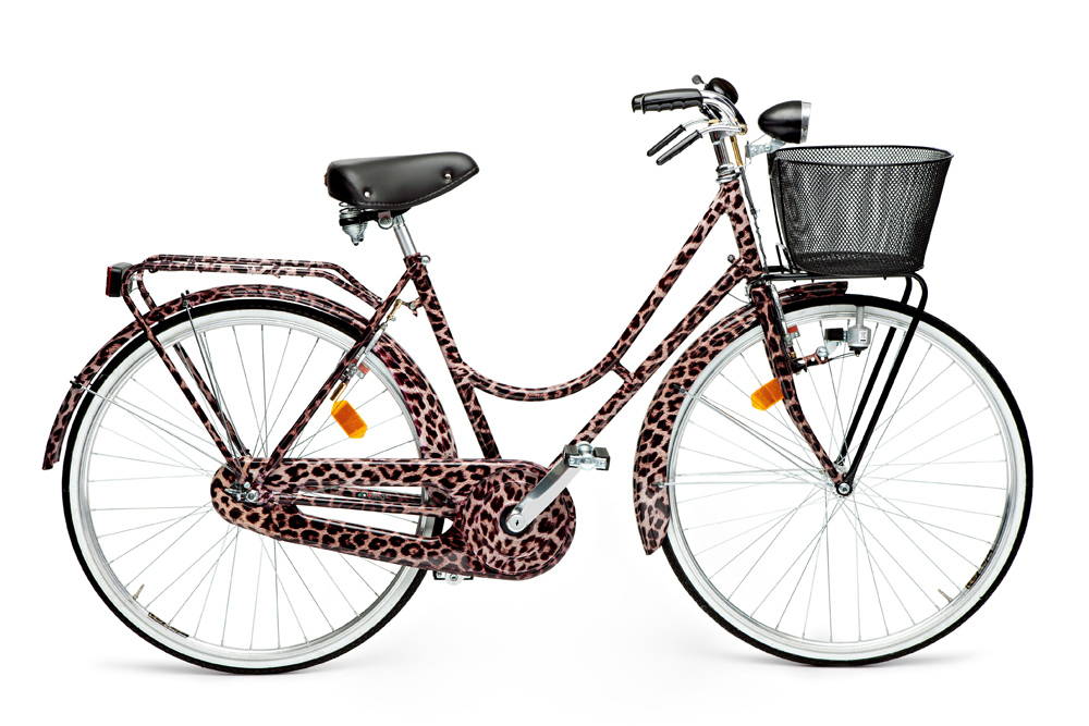 Dolce & Gabbana Animalier Bicycle