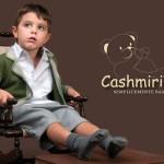 Cashmirino