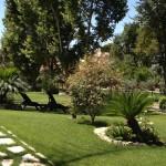 Parco Massimi