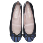 Rosario electric blue to black degrade - pair